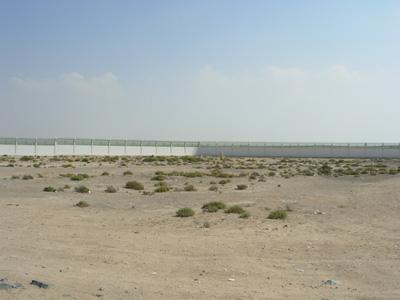 Abu Dhabi Photo