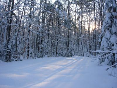 Maine Snow